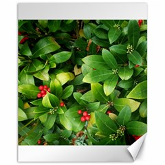 Christmas Season Floral Green Red Skimmia Flower Canvas 11  X 14