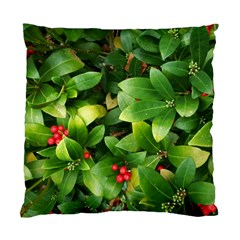 Christmas Season Floral Green Red Skimmia Flower Standard Cushion Case (two Sides)