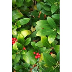 Christmas Season Floral Green Red Skimmia Flower 5 5  X 8 5  Notebooks