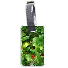 Christmas Season Floral Green Red Skimmia Flower Luggage Tags (two Sides)