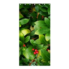 Christmas Season Floral Green Red Skimmia Flower Shower Curtain 36  X 72  (stall)