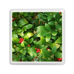 Christmas Season Floral Green Red Skimmia Flower Memory Card Reader (square)
