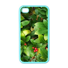 Christmas Season Floral Green Red Skimmia Flower Apple Iphone 4 Case (color)