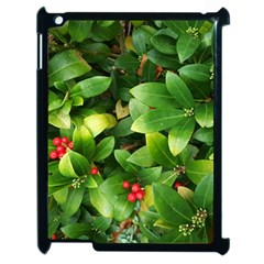 Christmas Season Floral Green Red Skimmia Flower Apple Ipad 2 Case (black)