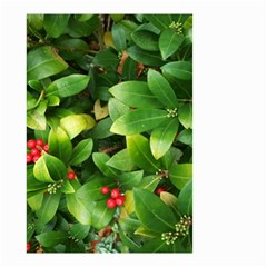 Christmas Season Floral Green Red Skimmia Flower Small Garden Flag (two Sides)