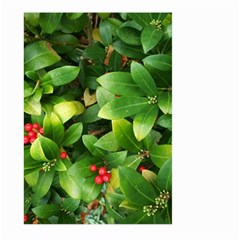 Christmas Season Floral Green Red Skimmia Flower Large Garden Flag (two Sides)