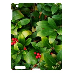 Christmas Season Floral Green Red Skimmia Flower Apple Ipad 3/4 Hardshell Case