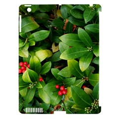 Christmas Season Floral Green Red Skimmia Flower Apple Ipad 3/4 Hardshell Case (compatible With Smart Cover)