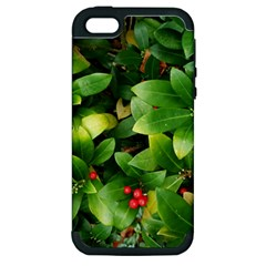 Christmas Season Floral Green Red Skimmia Flower Apple Iphone 5 Hardshell Case (pc+silicone)