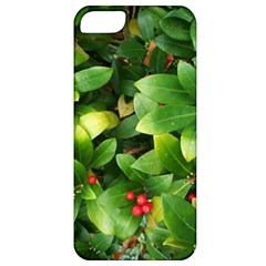 Christmas Season Floral Green Red Skimmia Flower Apple Iphone 5 Classic Hardshell Case