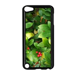 Christmas Season Floral Green Red Skimmia Flower Apple Ipod Touch 5 Case (black)