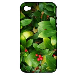 Christmas Season Floral Green Red Skimmia Flower Apple Iphone 4/4s Hardshell Case (pc+silicone)