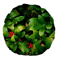 Christmas Season Floral Green Red Skimmia Flower Large 18  Premium Round Cushions