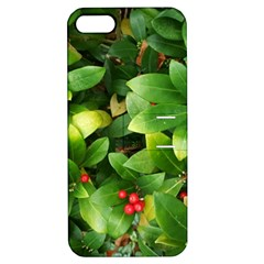 Christmas Season Floral Green Red Skimmia Flower Apple Iphone 5 Hardshell Case With Stand