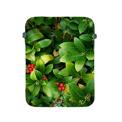 Christmas Season Floral Green Red Skimmia Flower Apple Ipad 2/3/4 Protective Soft Cases