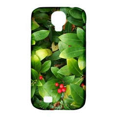 Christmas Season Floral Green Red Skimmia Flower Samsung Galaxy S4 Classic Hardshell Case (pc+silicone)