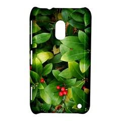 Christmas Season Floral Green Red Skimmia Flower Nokia Lumia 620