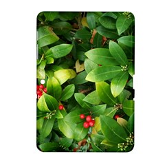 Christmas Season Floral Green Red Skimmia Flower Samsung Galaxy Tab 2 (10 1 ) P5100 Hardshell Case