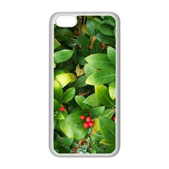 Christmas Season Floral Green Red Skimmia Flower Apple Iphone 5c Seamless Case (white)