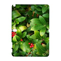 Christmas Season Floral Green Red Skimmia Flower Galaxy Note 1