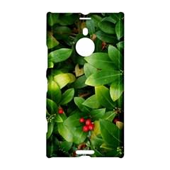 Christmas Season Floral Green Red Skimmia Flower Nokia Lumia 1520