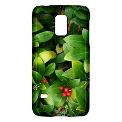 Christmas Season Floral Green Red Skimmia Flower Galaxy S5 Mini