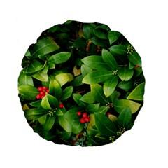Christmas Season Floral Green Red Skimmia Flower Standard 15  Premium Flano Round Cushions