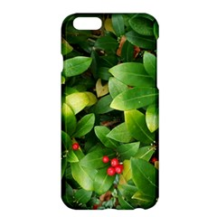 Christmas Season Floral Green Red Skimmia Flower Apple Iphone 6 Plus/6s Plus Hardshell Case