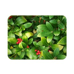 Christmas Season Floral Green Red Skimmia Flower Double Sided Flano Blanket (mini)