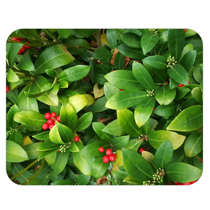 Christmas Season Floral Green Red Skimmia Flower Double Sided Flano Blanket (Medium)