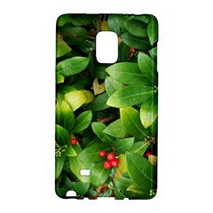 Christmas Season Floral Green Red Skimmia Flower Galaxy Note Edge