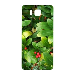 Christmas Season Floral Green Red Skimmia Flower Samsung Galaxy Alpha Hardshell Back Case