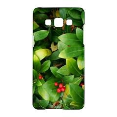 Christmas Season Floral Green Red Skimmia Flower Samsung Galaxy A5 Hardshell Case