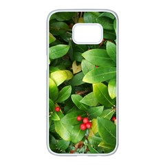 Christmas Season Floral Green Red Skimmia Flower Samsung Galaxy S7 Edge White Seamless Case