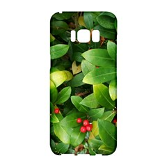 Christmas Season Floral Green Red Skimmia Flower Samsung Galaxy S8 Hardshell Case