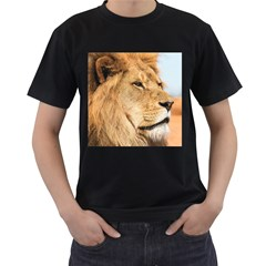Big Male Lion Looking Right Men s T Shirt (black) (two Sided)