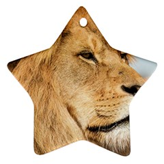 Big Male Lion Looking Right Star Ornament (two Sides)
