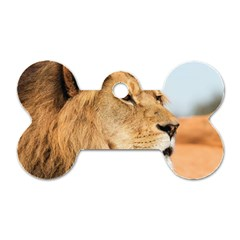 Big Male Lion Looking Right Dog Tag Bone (two Sides)