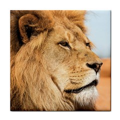 Big Male Lion Looking Right Face Towel