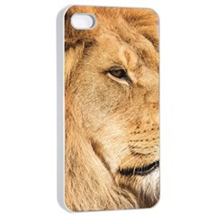 Big Male Lion Looking Right Apple Iphone 4/4s Seamless Case (white)