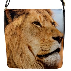 Big Male Lion Looking Right Flap Messenger Bag (s)