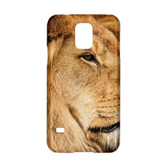 Big Male Lion Looking Right Samsung Galaxy S5 Hardshell Case