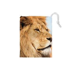 Big Male Lion Looking Right Drawstring Pouches (small)