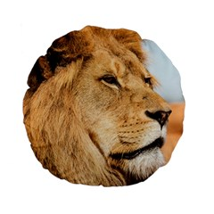 Big Male Lion Looking Right Standard 15  Premium Flano Round Cushions