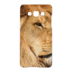 Big Male Lion Looking Right Samsung Galaxy A5 Hardshell Case