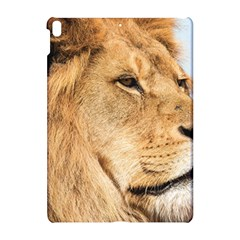 Big Male Lion Looking Right Apple Ipad Pro 10 5   Hardshell Case
