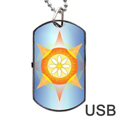 Star Pattern Background Dog Tag Usb Flash (one Side)