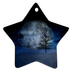 Winter Wintry Moon Christmas Snow Ornament (star)