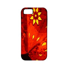 Star Light Christmas Romantic Hell Apple Iphone 5 Classic Hardshell Case (pc+silicone)