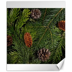 Branch Christmas Cone Evergreen Canvas 8  X 10